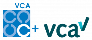 VCA SSVV